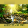 Journey to Wild Eden: Sounds of Nature (Birds, River, Waves, Mosquitoes, Babbling Brook) - Various Artists