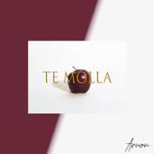 Te Molla (feat. Killua) прослушать и cкачать в mp3-формате