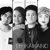 Te Kākano - Various Artists, Various Artists