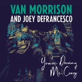 Van Morrison, Joey DeFrancesco - You're Driving Me Crazy