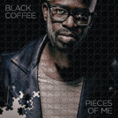 Pieces of Me (Platinum Mixed Edition)