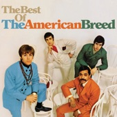 The American Breed - I Don't Think You Know Me