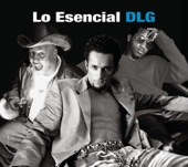 DLG - Soledad (salsa)