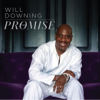 The Promise - Will Downing