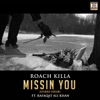 Missin You Extended Version feat Rafaqat Ali Khan Single