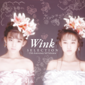 Selection  25th Anniversary Self Selection -Wink