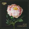 Coma_Cose - Post Concerto artwork