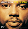 Norman Brown - After the Storm  artwork