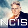 NCIS, Season 16 - Synopsis and Reviews