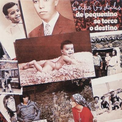De pequenino se torce o destino - Sérgio Godinho