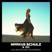 Calling for Love (Marcus Santoro Remix)
