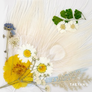 WHITE NIGHT – TAEYANG