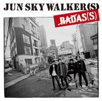 カバーアーティスト|JUN SKY WALKER(S)