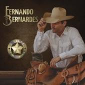 Fernando Bernardes Country - Old Paint (Poeira Branca) [feat. Conrado & Aleksandro]