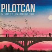 Pilotcan - Daylight Savings Time