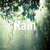 Soft Relaxing Rain