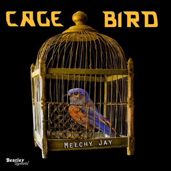 caged birds without a song Right now i feel like a bird caged without a key everyones comes stearing me with so much joy and revelry they don't know how i feel inside through my smile i cry.