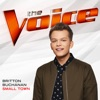 Small Town The Voice Performance Single