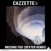 Missing You (feat. Parson James) [Dexter Remix Extended]