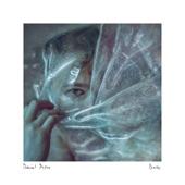 Daniel Pioro - Dust: I. Cosmos