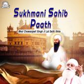 Sukhmani Sahib Paath