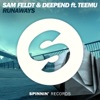 Sam Feldt & Deepend