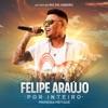 Espaçosa Demais - Ao Vivo by Felipe Araújo iTunes Track 1