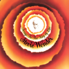 Isn't She Lovely - Stevie Wonder
