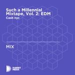 Such a Millennial Mixtape, Vol. 2: EDM