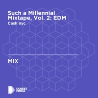 Such a Millennial Mixtape, Vol. 2: EDM - DJ Snake & Dillon Francis