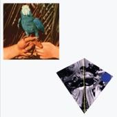 Andrew Bird - Left Handed Kisses (feat. Fiona Apple)