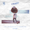 Lost Frequencies & Zonderling - Crazy (Extended Mix) 插圖