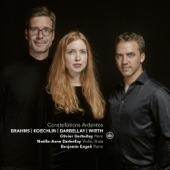 Horn Trio in E-Flat Major, Op. 40: IV. Allegro con brio artwork