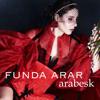 Funda Arar - Duyanlara Duymayanlara artwork
