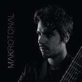 Makrotonal Guitar