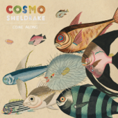 Come Along (Edit) - Cosmo Sheldrake