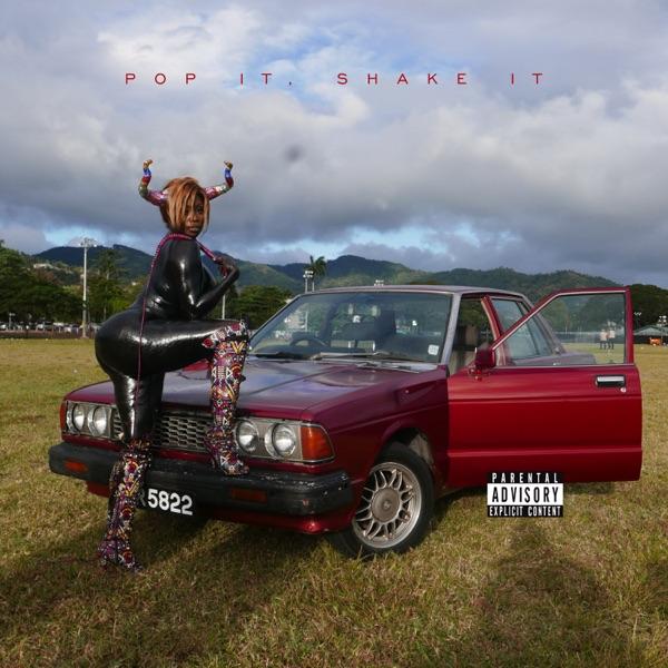 Pop It, Shake It (feat. DJ Mustard) - Single