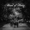 Nadie Te Va a Amar Como Yo - Single, Band of Horses
