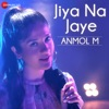 Jiya Na Jaye
