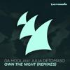 Da Hool - Own the Night (feat. Julia Detomaso) [Cyborgs and Da Hool Remix] artwork
