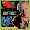 David Attenborough - David Attenborough: Quest In Paradise  artwork