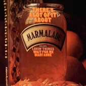 Marmalade - Wait for Me Mary Anne