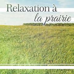 Relaxation à la prairie - Méditation profonde, la liberté, musique de bien-être, massage, spa, ambiance naturel