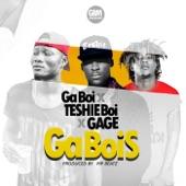 Ga Bois - Single