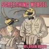 Screeching Weasel - My Brain Hurts artwork