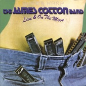 James Cotton - How Long Can a Fool Go Wrong (Live)