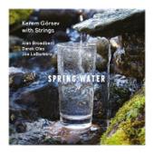 Spring Water (feat. Alan Broadbent, Darek Oles & Joe LaBarbera) [Kerem Görsev with Strings]