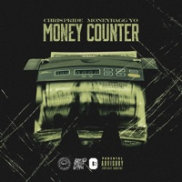 Money Counter (feat. Moneybagg Yo) - Single Mp3 Download