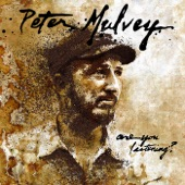 Peter Mulvey - The Song After the Last Song