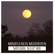Mindfulness Meditation – Natural Sleep Aid, Music for Trouble Sleeping, Yoga for Restful Sleep, Relaxing Sounds for Bedtime - Peaceful Sleep Music Collection - Peaceful Sleep Music Collection